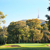 RoyalCanberra08TowerCropped_6317