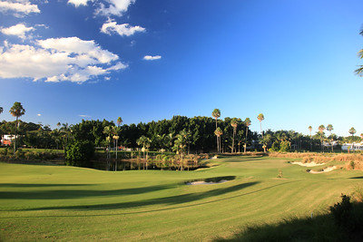 SanctuaryCovePalms_10FWSide_1105