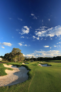 SanctuaryCovePalms_13FWBunkersVert_1162