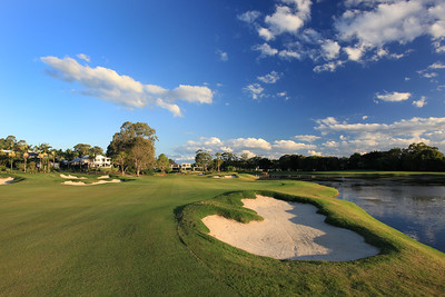 SanctuaryCovePalms_13FWRHS_1154