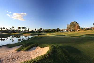 SanctuaryCovePalms_08Back_1165