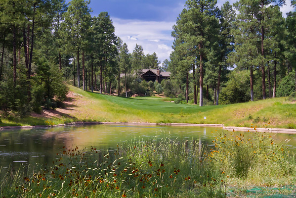 Golf at Chaparral Pines