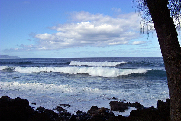 Near Shark's Cove<br /> Pupukea Road and Kam Hiway - North Shore Oahu Hawaii