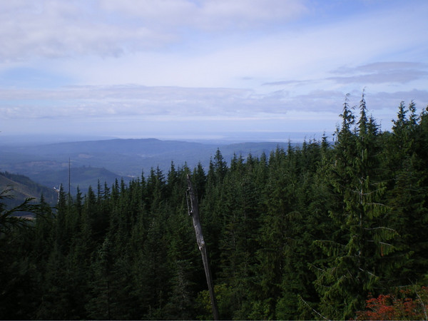 View from Keiths trail