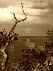Grand Canyon National Park AZ 7/17/2010 South Rim