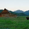 Famous Barn on Mormon Row - Teton's National Park