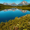 Oxbow Bend Reflections - Tetons