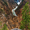 Grand Canyon of Yellowstone - Upper Falls View