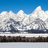 12 X 36 Grand Teton National Park  # 8163