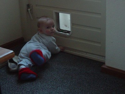 And Elise discovered the cat door soon thereafter