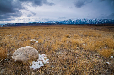 National Elk Refuge- Jackson Hole Wyoming