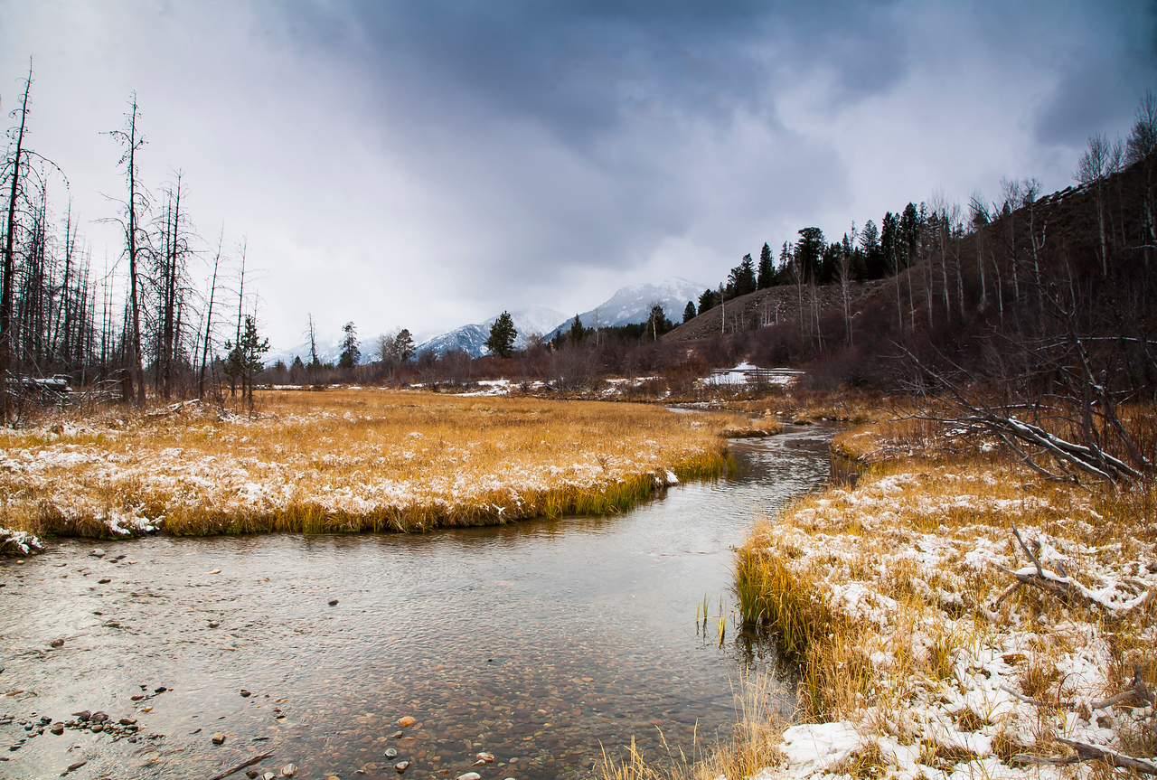 Trout Stream - Moose Junction Wyoming