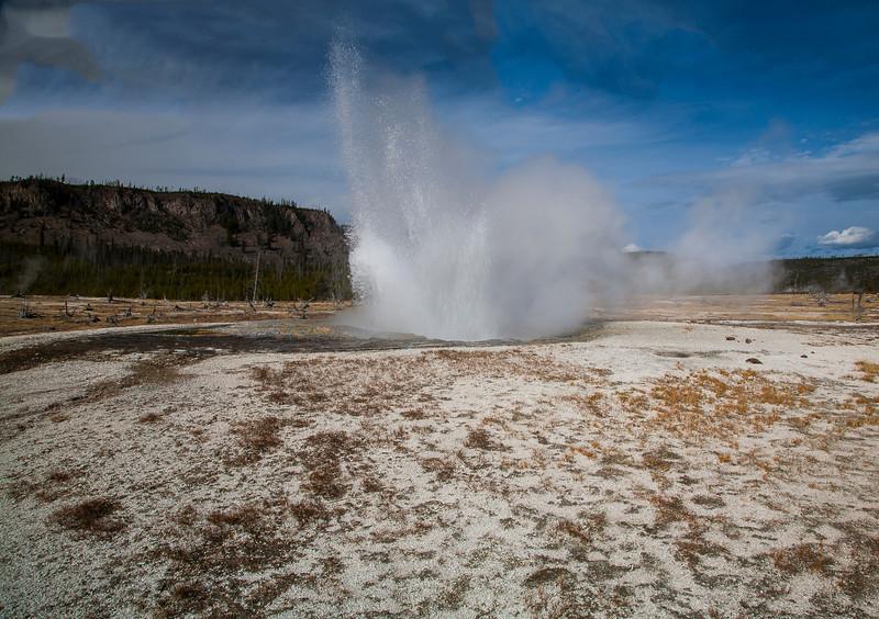 Geyser- Yellowstone National Park