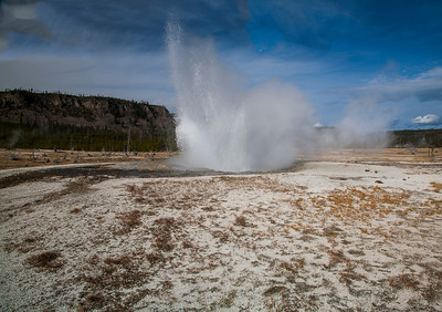 Geyser- Yellowstone National Park