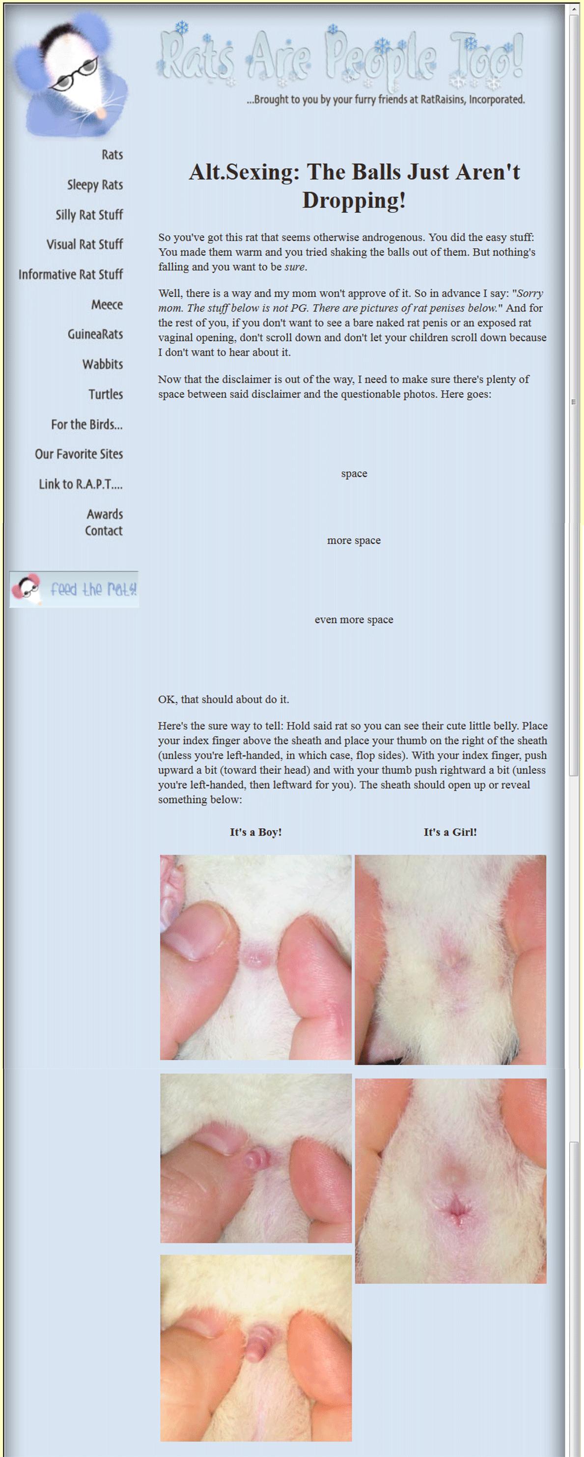 ratraisins2_0000_RB-sexing3-2835416534-O-copy