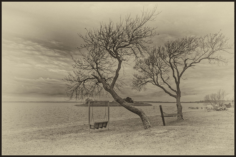 """Waiting for Spring."" B&W.  View of Currituck Sound from Knotts Island."