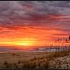 Sunrise at the Back Bay National Wildlife Refuge -1