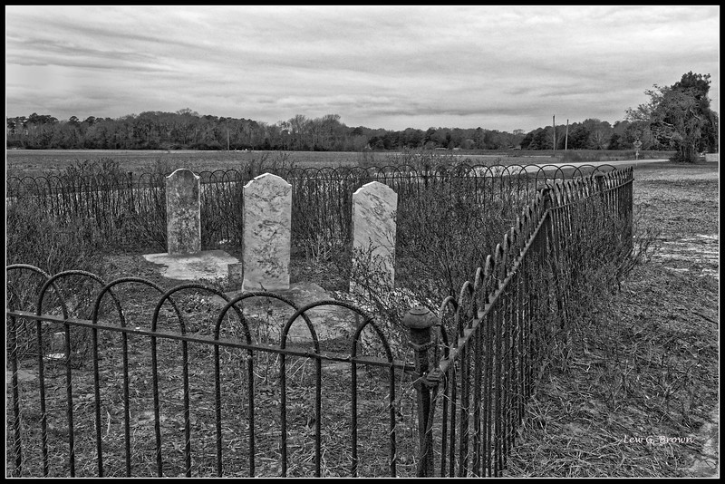 """""""Rest Area.""""  As in many rural areas, there are family cemeteries, often along highways."""