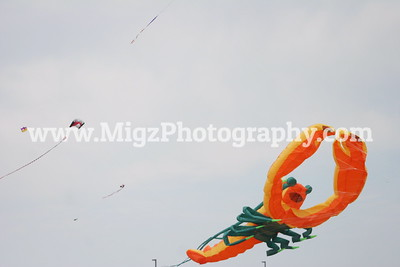 Great Lakes Kite Flyers