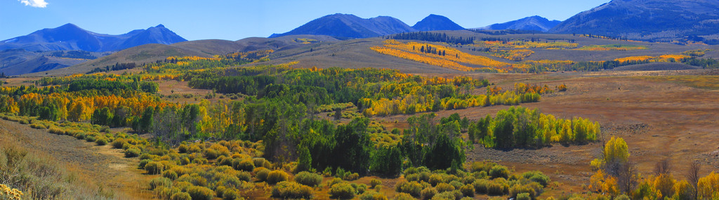 Inyo National Forest (Panorama), Rt. 395, California