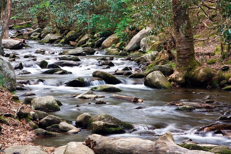 20090425 Smoky Mountains 0103