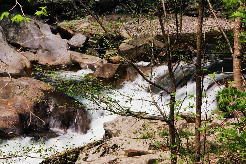 20090425 Smoky Mountains 0029