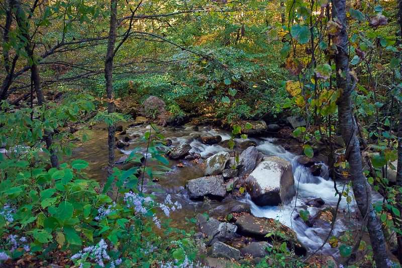 Great Smoky Mountains National Park, Tennessee 0059