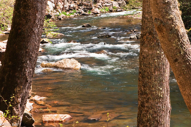 20090425 Smoky Mountains 0009