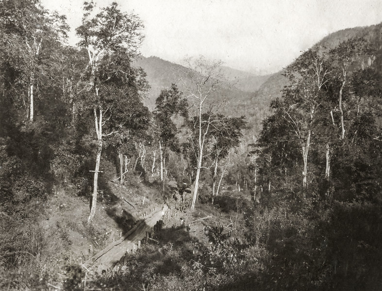 """Part of the chute near the top. This chute is 1 1/2 miles in length, the total fall being 900 ft but most of this is confined to the first 1/2 mile. In the distance is seen the valley of M Han below the hill. The arm on the tree carries the telephone wire."""