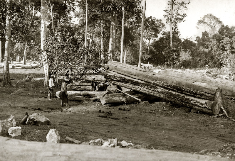 """Loading a log from off the ground onto a gindake by means of blocks and wire rope."""