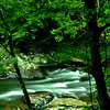 the Little Pigeon River between Pigeon Forge and Gatlinburg