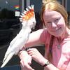 Birds of two feathers... Leadbeater Cockatoo & Jeanie ~ Bird Crazy