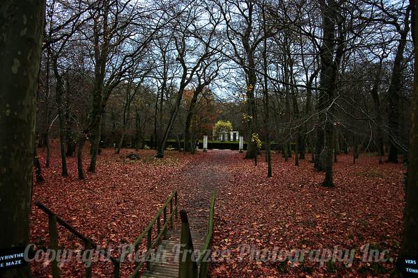 Franch Countryside - November 2008