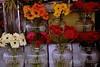Seattle Flower Market