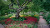 Public Gardens 2000<br /> Portsmouth, New Hampshire