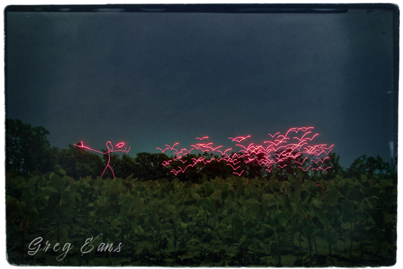 Four-minute time exposure light painting with red flashlight in field in North Carolina.