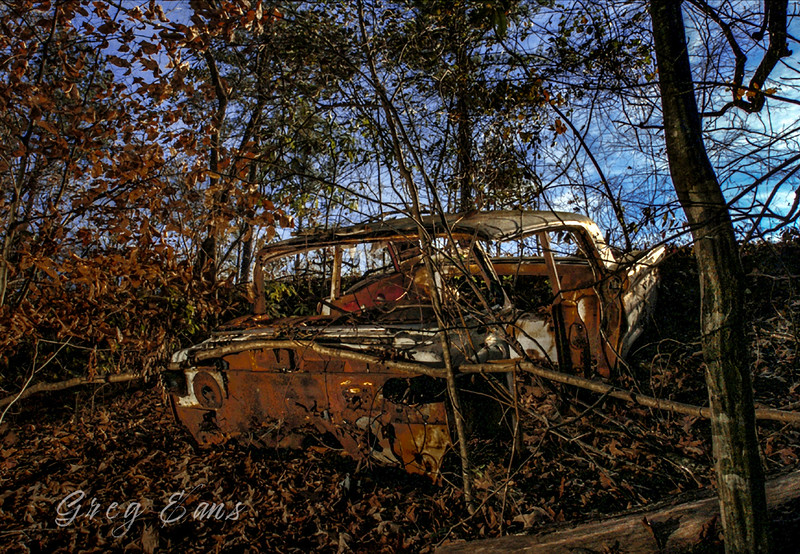 Old, abandoned car near the banks of a swamp in North Carolina.