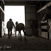 A rancher and his Mustang.  North Carolina.