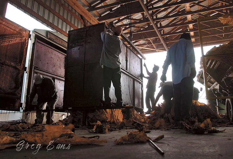 Employees at R.B. lancaster and Sons Farms bale tobacco in a barn near Wilson, North Carolina, on a hot, 103-degree, August day.