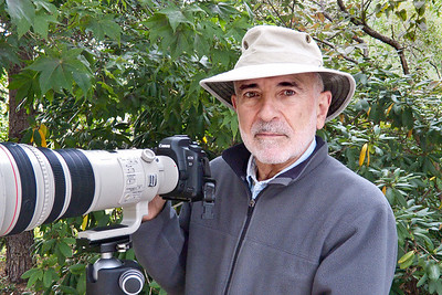 Dave Valvo