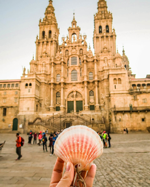 advice for Camino walkers: follow the scallop seashells.