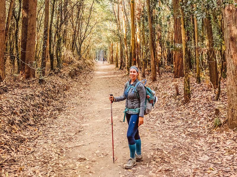 A pilgrim shares tips for walking the Camino Frances