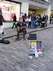 """street musicians are just so wonderful - specially if they are of """"high quality"""" found in Europe"""
