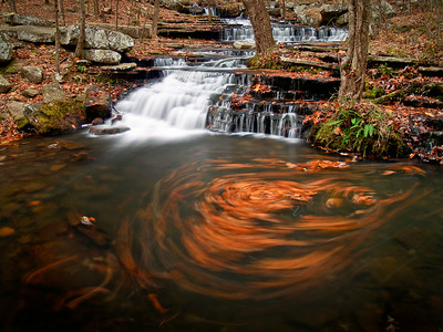 Leaves caught in a swirl at Collins Creek