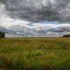 Crow Creek Meadow