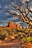 Arches National Park, Moab UT