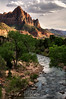 The Virgin River Meanders Among the Commanding Presence of Watchman Mountain