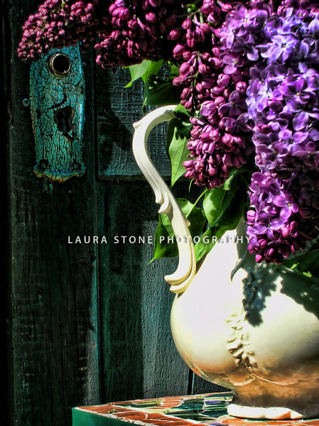 Pitcher of lilacs by old blue barn door