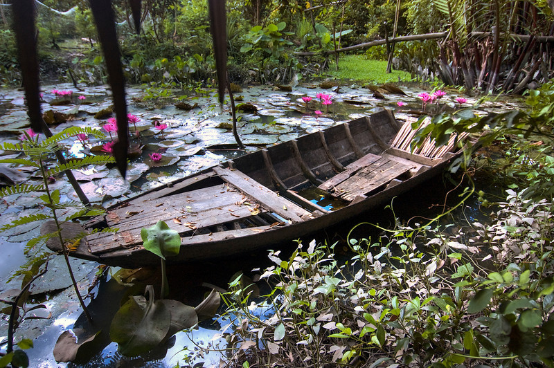 Backwaters of the Mekong River delta, Vietnam.