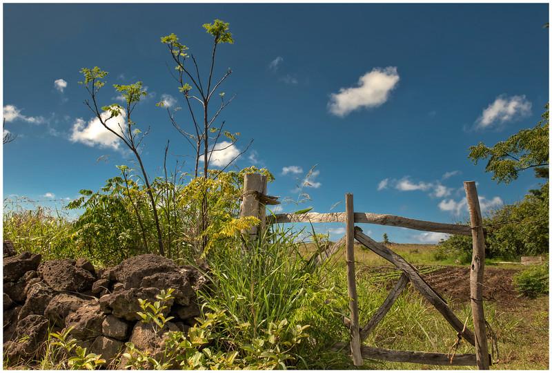Landscape along the road to the sea, Easter Island (Rapa Nui) - HDR.